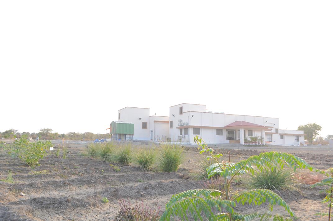 Sadatan Factory